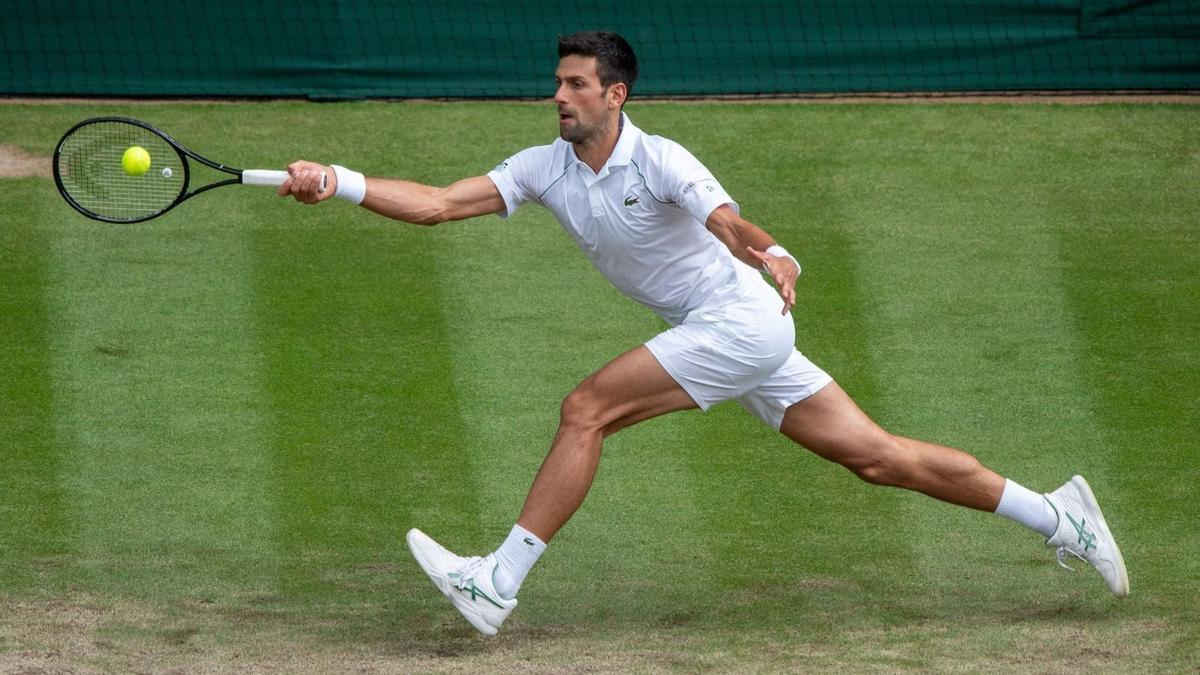 Djokovic devuelve un golpe.