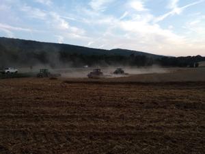 Agricultores aran campos de Santa Coloma de Queralt para crear un cortafuegos.