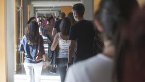 La universitat catalana oferirà 13 graus de 3 anys el curs vinent