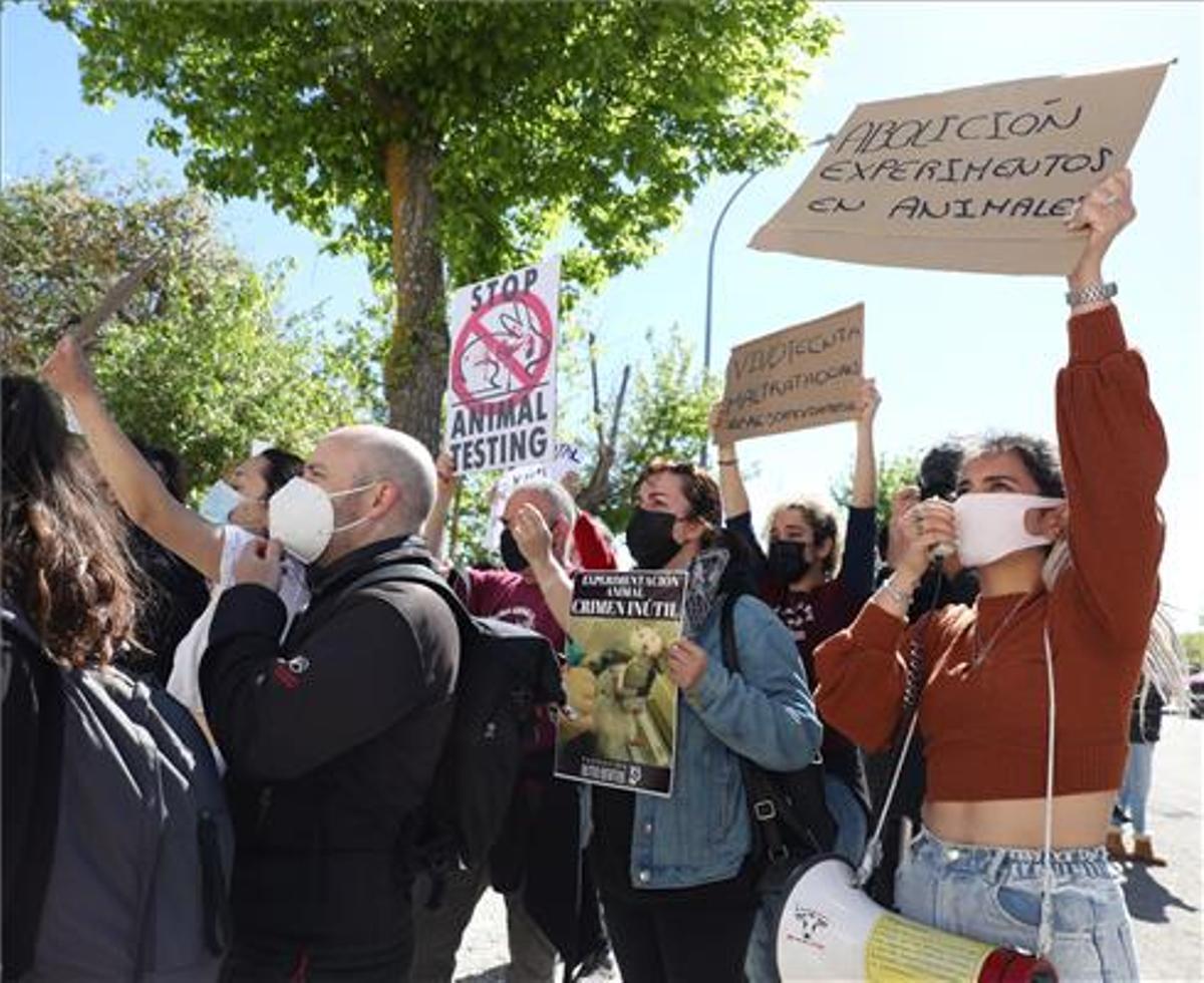 Protesta a las puertas del laboratorio Vivotecnia, en Madrid.