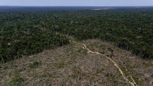 El Brasil permet l'explotació minera de 4,7 milions d'hectàrees a l'Amazònia