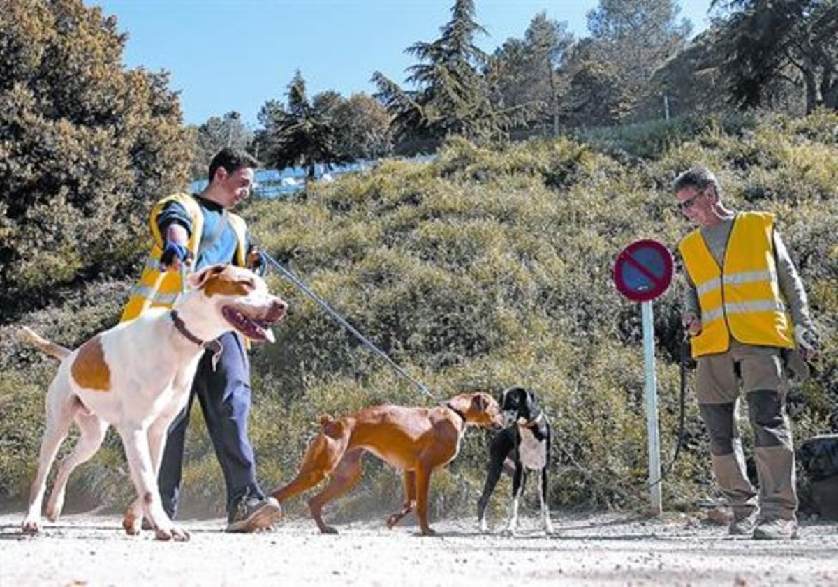 Socialización 8Unos voluntarios pasean perros en el exterior del centro de acogida de la Arrabassada.