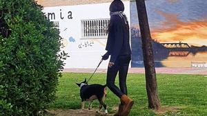 Una voluntaria de VioPet pasea a un perro de acogida.