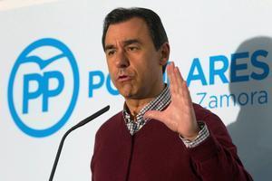 Fernando Martínez Maillo, PP