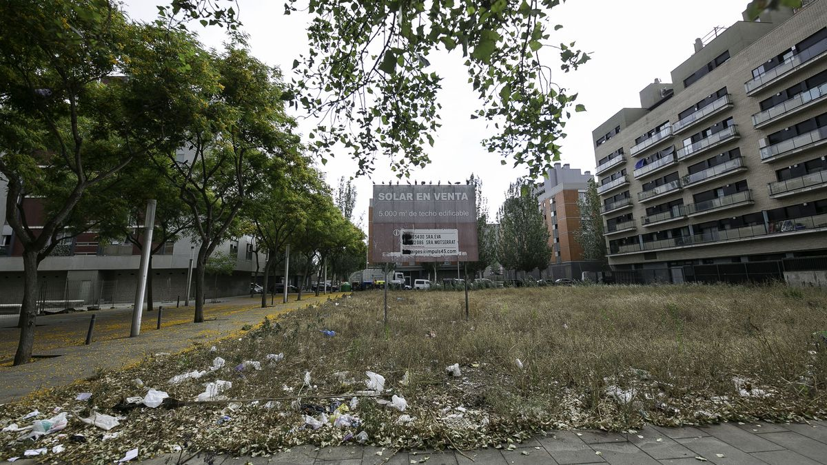 Un solar de titularidad privada, 5.000 metros de techo edificable en venta, convertido en un hogar de ratas, en mitad de la Nueva Mina.