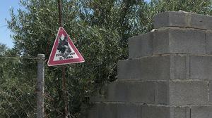 Muere un niño de 4 años por el ataque de un perro en Jaén