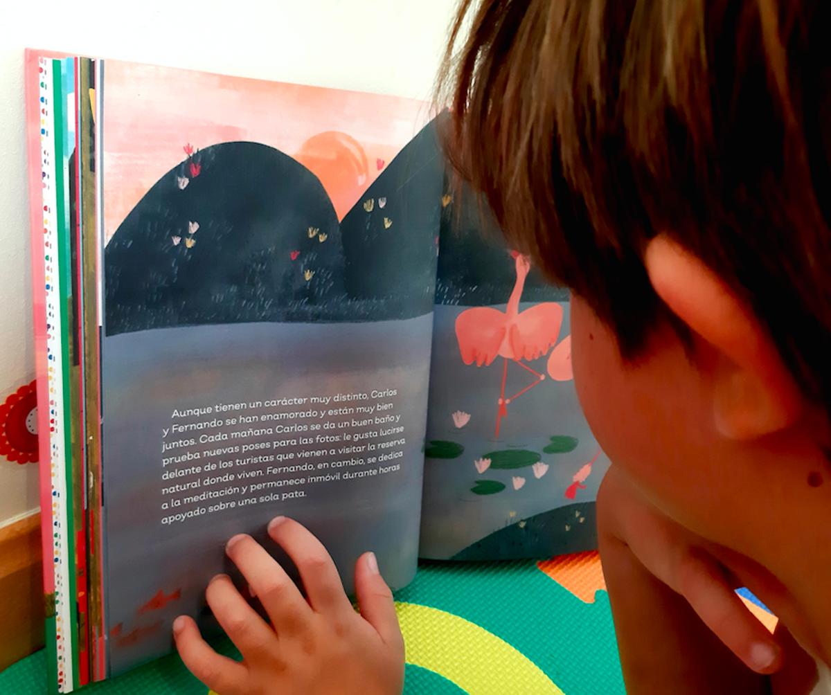 Un niño lee la historia de Carlos y Fernando, dos flamencos machos enamorados, en el libro 'Familias fabulosas'