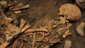 Restos de un morador de Atapuerca.