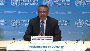 El 11 de marzo de 2020, la OMS calificó la situación como pandemia por primera vez.