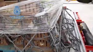 La Policía ha rescatado 20.000 pollos abandonados por una empresa en el aeropuerto Adolfo Suárez Madrid-Barajas.