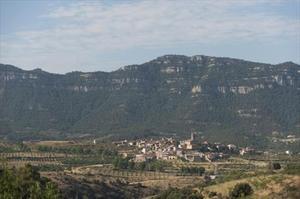 Vista panoràmica d'Ulldemolins amb el Montsant al fons.