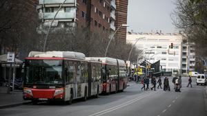 Dos autobuses en la parada de calle Sao Paulo.