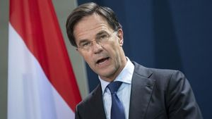 El primer ministro de Holanda, Mark Rutte.