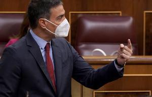 Pedro Sánchez, el pasado junio, en su escaño del Congreso de los Diputados.