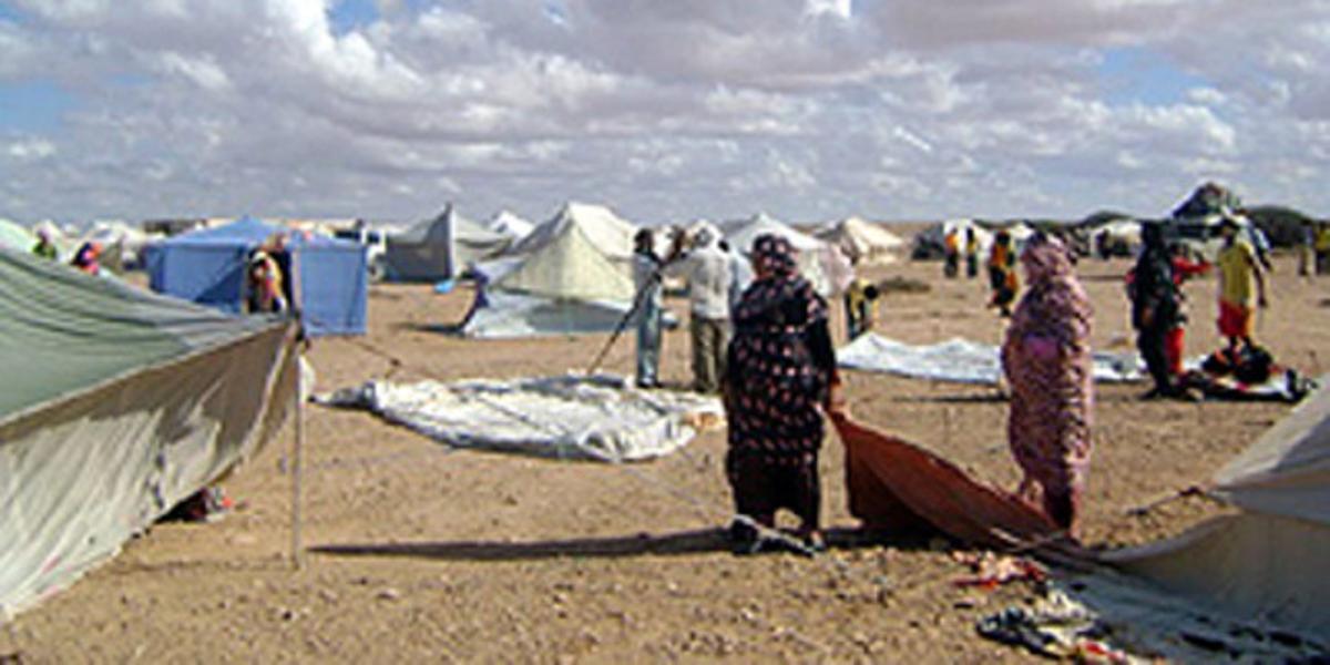 Imagen de las jaimas que los saharauis han levantado este fin de semana a 20 kilómetros de El Aiún para reivindicar los derechos del Sáhara Occidental.