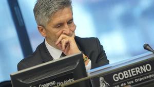 Fernando Grande-Marlaska, ministro del Interior, en una comparecencia en el Congreso.
