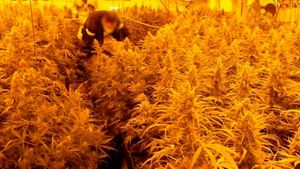 Los Mossos desarticulan una banda de tráfico de drogas a gran escala en toda Europa.