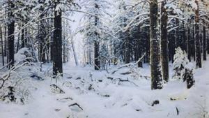 El cuadro 'Invierno' (1890), de Iván Shiskin, expuesto en el Museo Estatal Ruso de San Petersburgo.