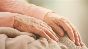 Investigadors aconsegueixen explicar per què la memòria es deteriora amb la vellesa