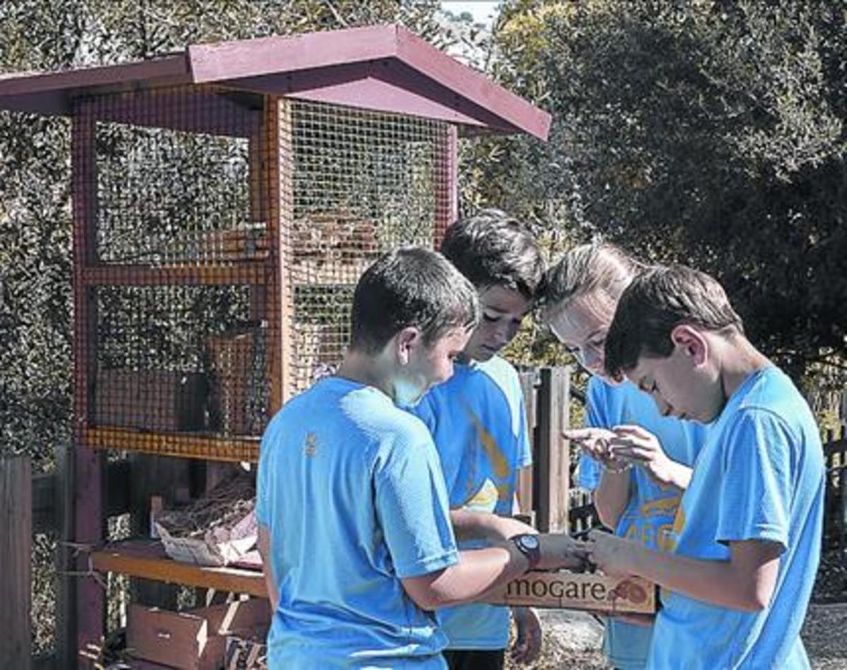 Varios alumnos de la Escola Montseny, junto a su hotel de insectos.
