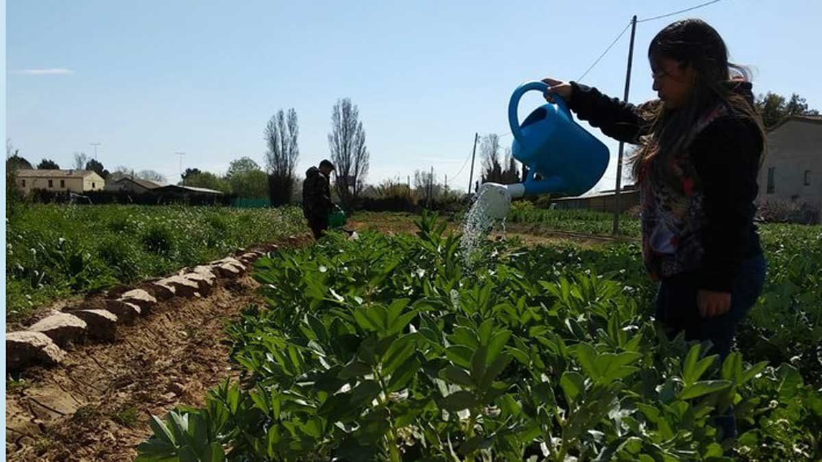 Una joven riega los cultivos en una explotación agraria en Sant Boi.