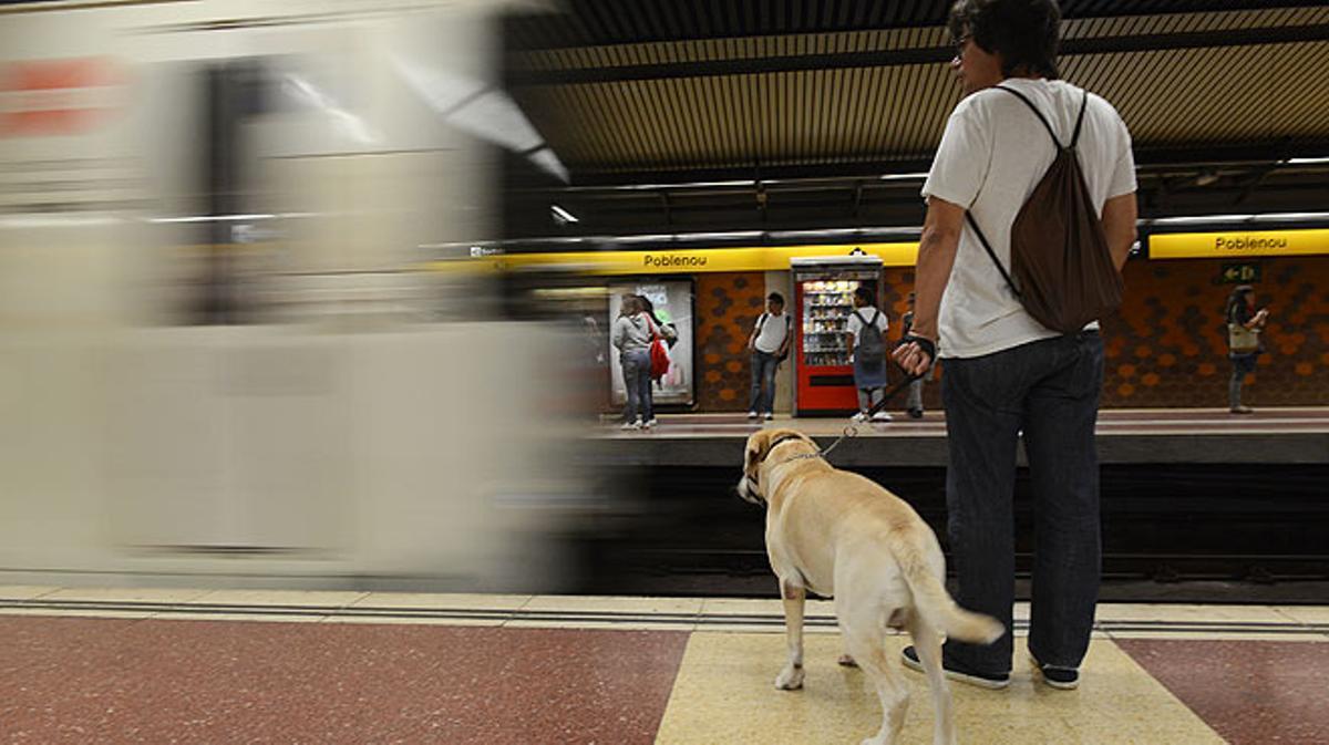 Els gossos ja viatgen en metro a Barcelona.