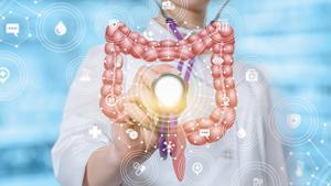 Nuestro aparato digestivo es una maquinaria perfecta que debemos cuidar cada día