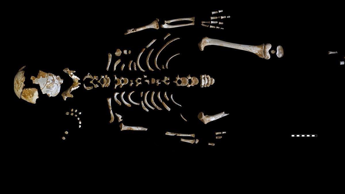 Així creixien els neandertals