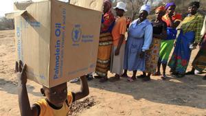 Un niño carga con una caja de alimentos de la PAM enZimbabue, en una foto del 2015.
