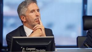El ministro del Interior,Fernando Grande-Marlaska,durante una comparecencia en el Congreso.