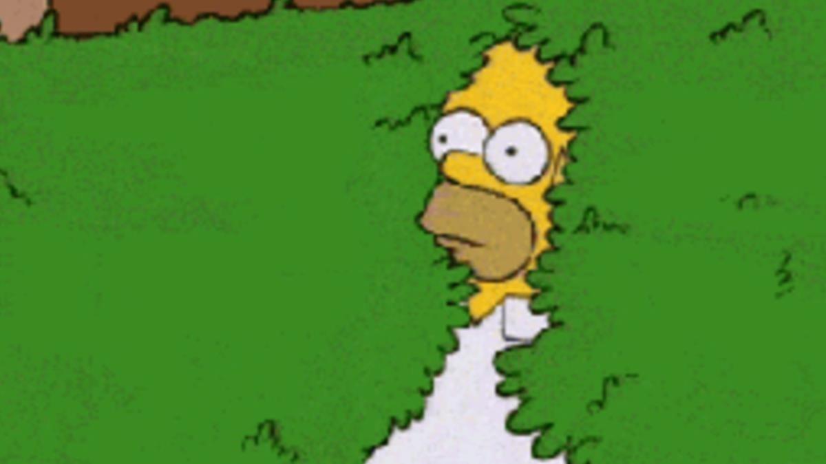 Homer Simpson fundiéndose en el seto para desaparecer suele emplearse como sinónimo de: tierra, trágame.