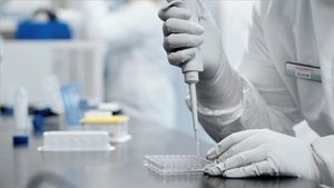 Investigadores del laboratorio Moderna trabajan en la vacuna contra la COVID-19.