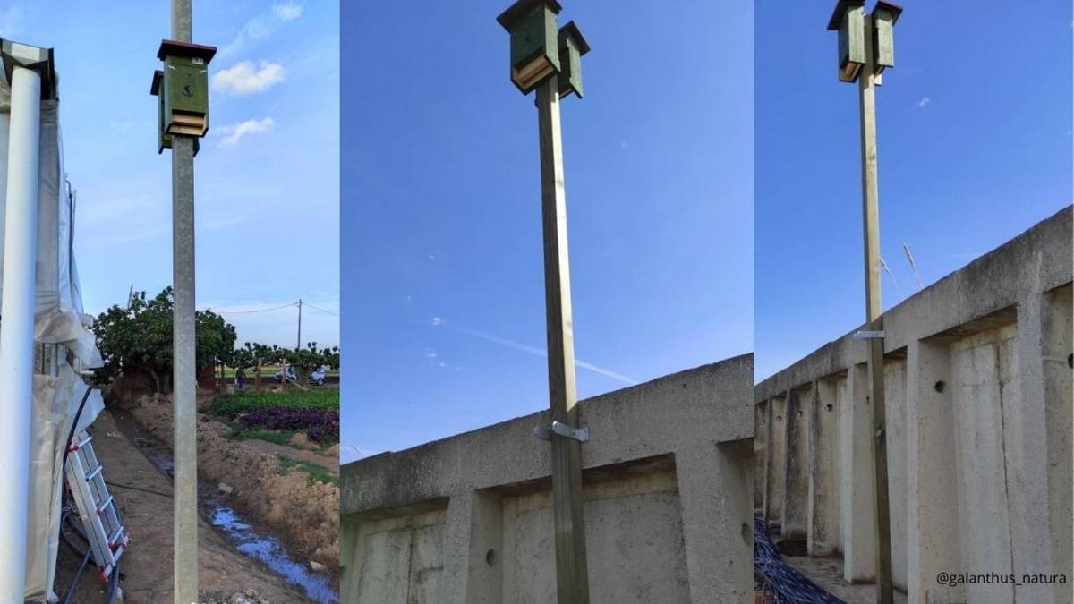 Viladecans s'afegeix a la xarxa Eco-bats
