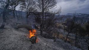 26.07.21 Incendi forestal originat a Santa Coloma de queralt, a la foto la serra de miralles -Agulla grossa-creu de ferro Foto Marc Vila