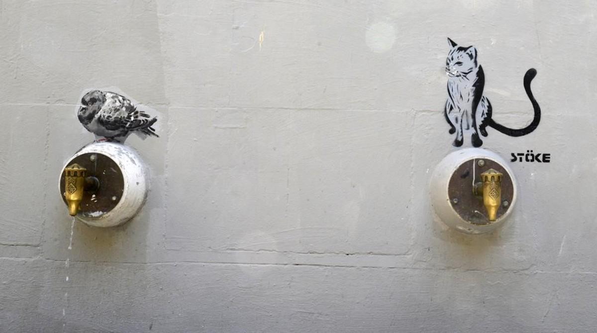 Una de las palomas supervivientes de la fuente de Sant Agustí Vell. Al lado, el último inquilino del tercer grifo: un gato firmado porStöke.