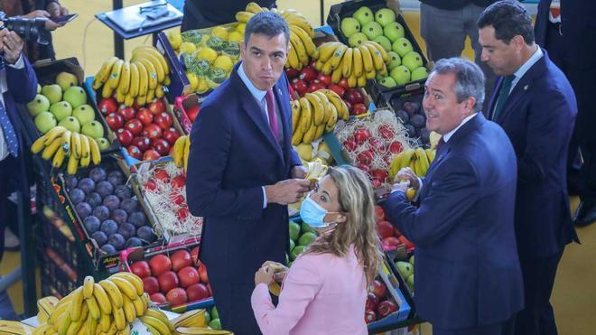 Pedro Sánchez anuncia la creación de bono joven de vivienda de 250 euros mensuales