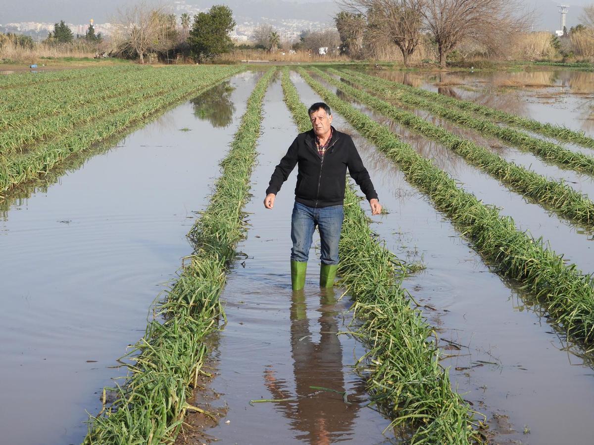 Agricultor del Parque Agrario del Baix Llobregat