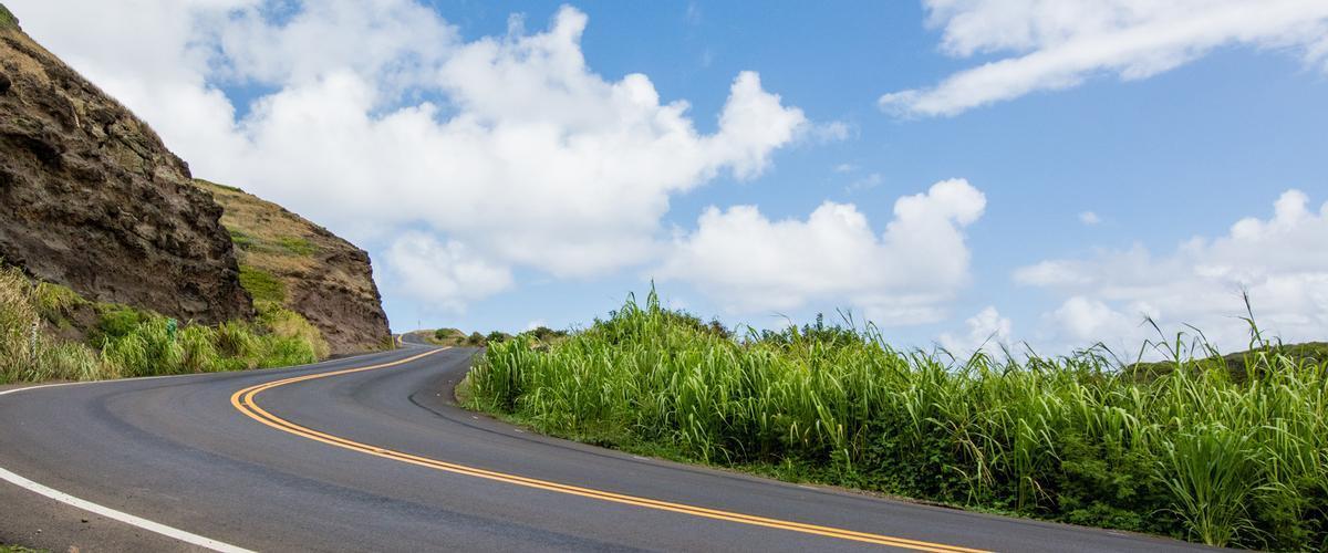 Objetivo: reducir a la mitad las muertes por accidentes de tráfico