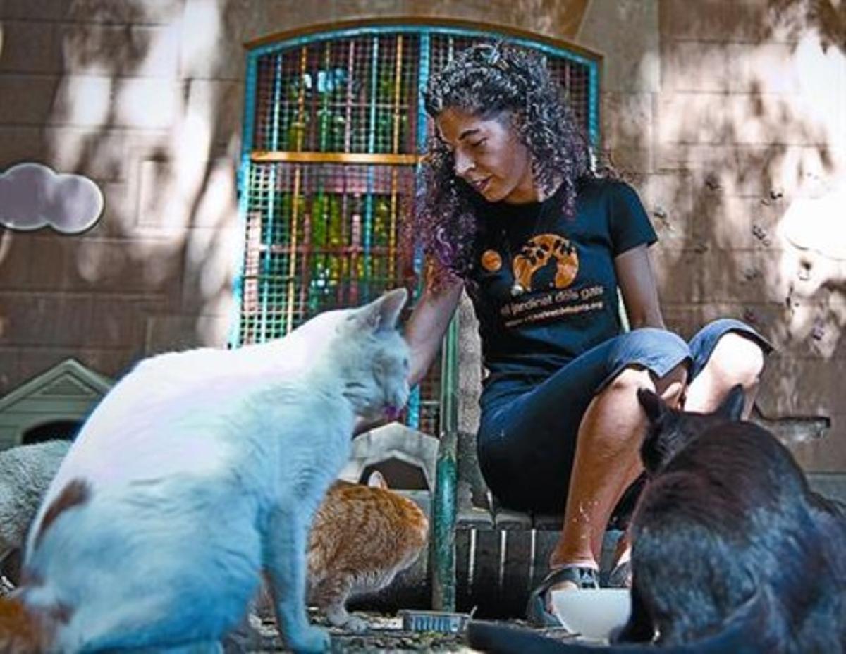 Alexandra Salvador: «Lo importante es rescatar a los gatos de la calle»