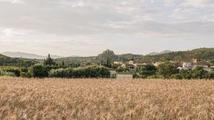 Vista de Vilajuïga, que custodia el secreto de su agua mineral con gas natural