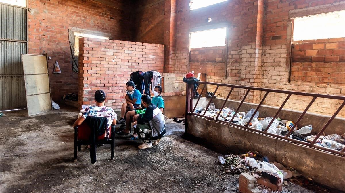 Los jóvenes llevan cerca de dos meses malviviendo en este hogar más que insalubre. Lamentan la falta de ayudas de los vecinos, y las administraciones, y desean poder salir del Segrià. Necesitamos poder comprar un billete de autobús, imploran.