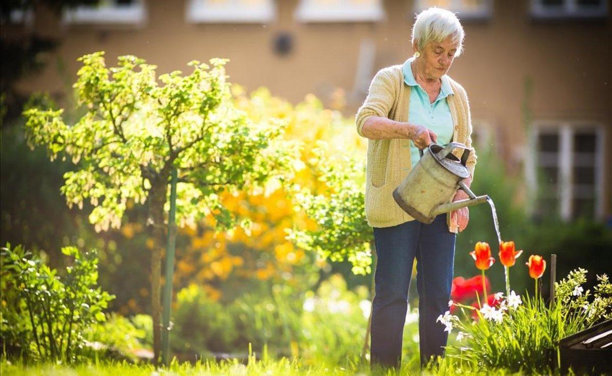 Una señora riega las plantas del jardín.