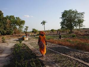 Cooperativa de mujeres agricultoras en Kolda (Senegal).