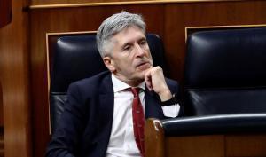 Fernando Grande-Marlaska, ministro del Interior, en el Congreso.