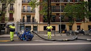 Trabajadores pintan el asfalto, en Madrid.