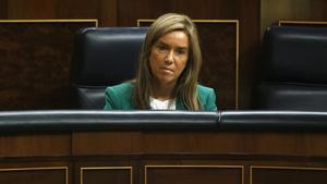 Ana Mato, en el Congreso, durante una sesión de control el pasado octubre.