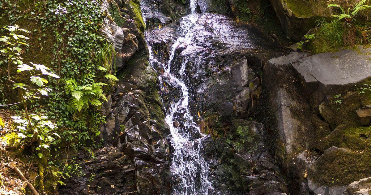 ¿Cómo beber agua mineral natural de manera más sostenible?