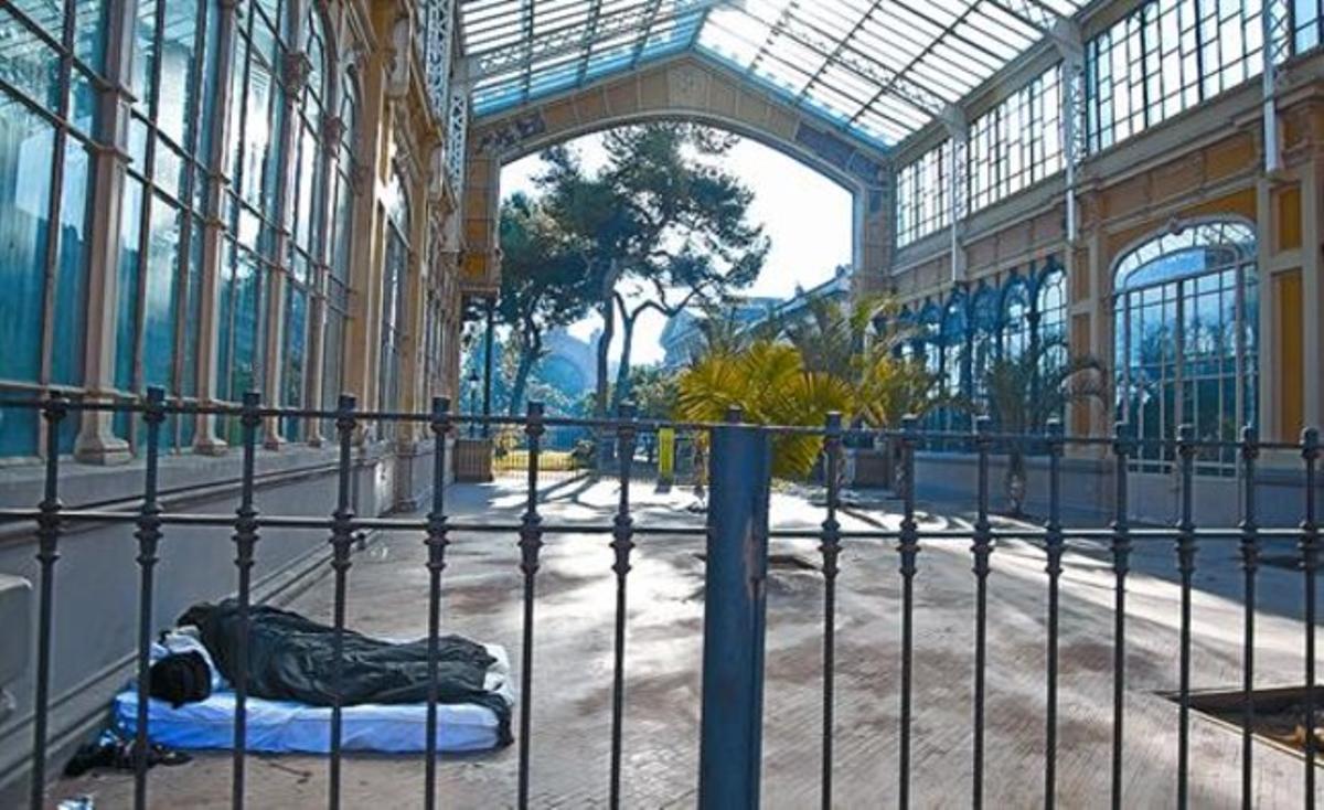 Un indigente duerme en el Hivernacle del parque de la Ciutadella, el domingo pasado.