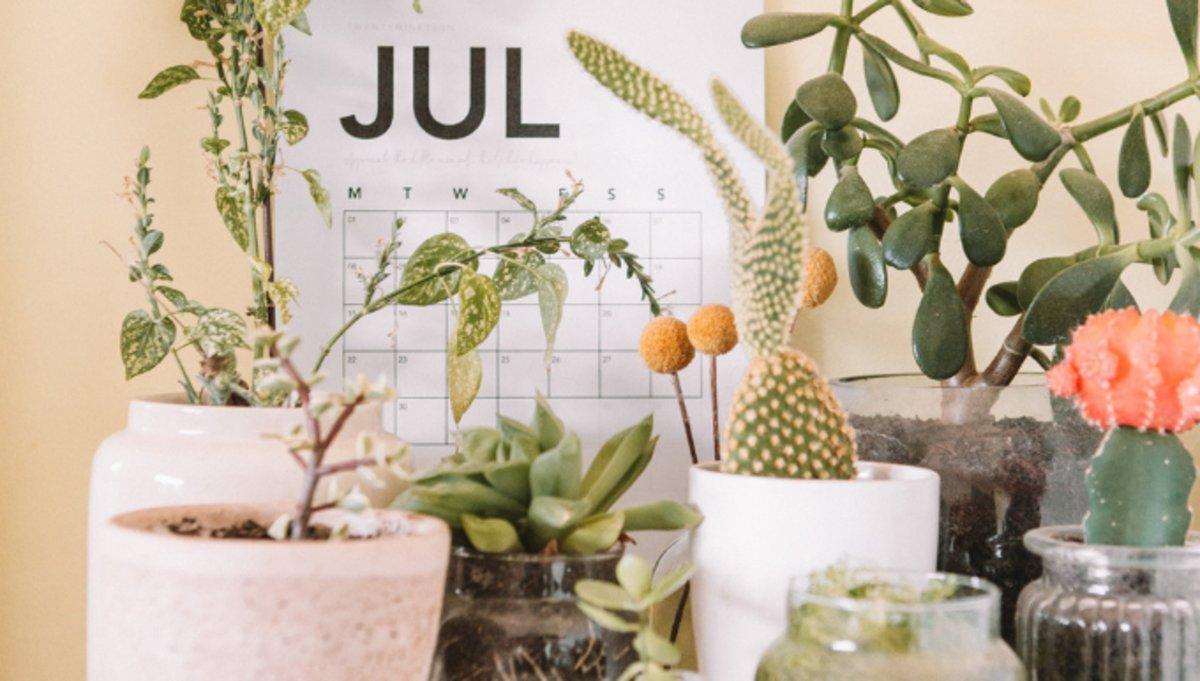 Agenda de julio para el emprendedor