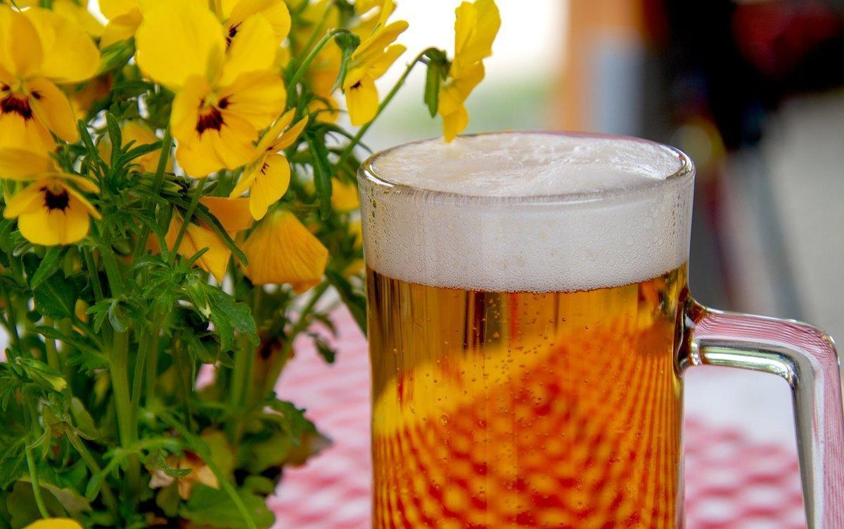 La mejor selección de cerveza artesana